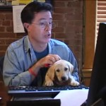 Riley the puppy and Stephen Colbert
